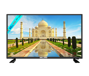 WELLMAX 24 Inch W24MDG LED TV